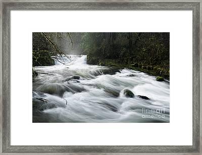 Fast-flowing Creek Framed Print by Masako Metz