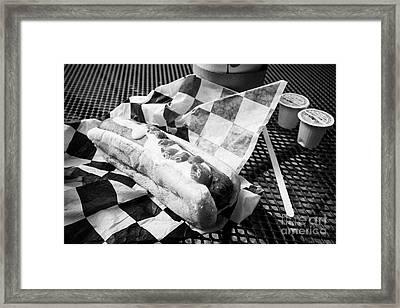 fast food hotdog with ketchup and mustard Washington DC USA Framed Print