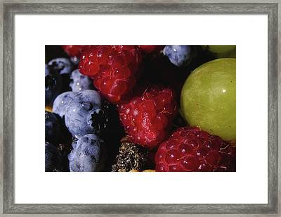 Fast Or Feast Framed Print
