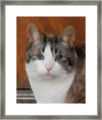 Fat Cats Of Ballard 3 Framed Print