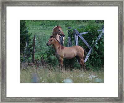 Framed Print featuring the photograph Father And Son by Rick Friedle