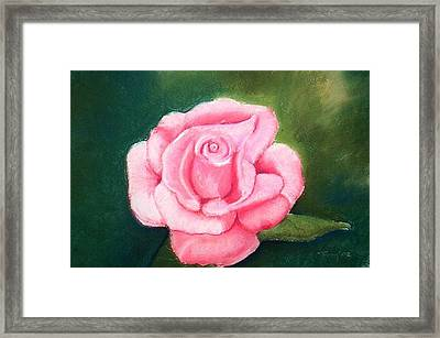 Father's Garden Framed Print by Terry Groehler