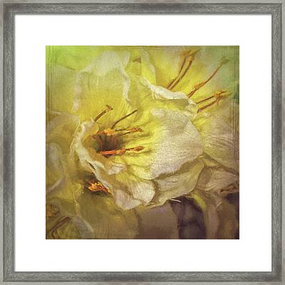 Framed Print featuring the photograph Faux Flowers by Lewis Mann