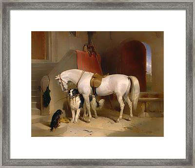 Favorites - The Property Of Hrh Prince George Of Cambridge Framed Print by Mountain Dreams