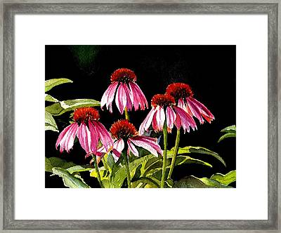Favour Framed Print by Kathy Nesseth