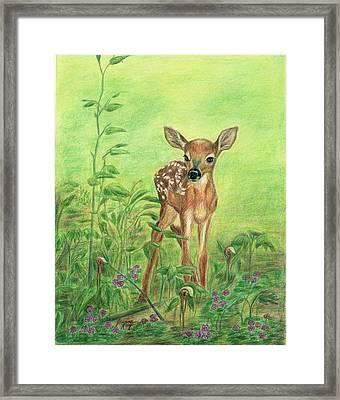 Fawn Framed Print by Jeanne Kay Juhos