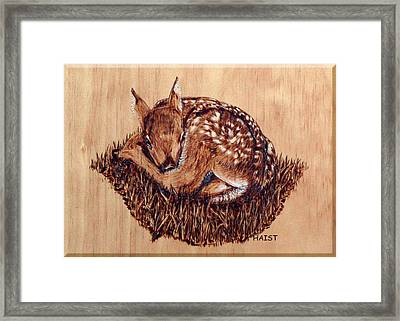 Framed Print featuring the pyrography Fawn by Ron Haist