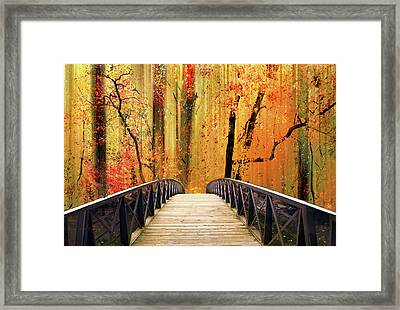 Framed Print featuring the photograph Forest Fantasia by Jessica Jenney