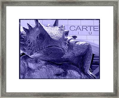 Fear The Frog - Tcu 5 Framed Print by Stephen Stookey