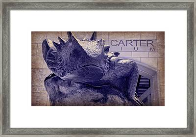 Fear The Frog - Tcu 6 Framed Print by Stephen Stookey