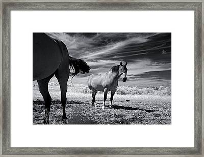 Fear The Light Framed Print by Thomas Shanahan