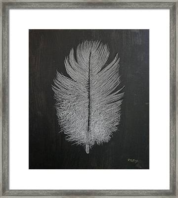 Feather 1 Framed Print