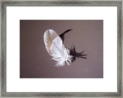 Feather And Shadow 1 Framed Print by Elena Kolotusha