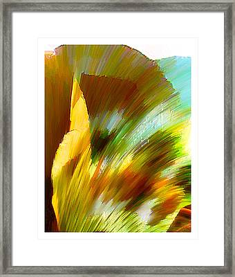 Feather Framed Print by Anil Nene
