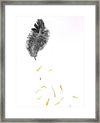 Feather Framed Print by Bella Larsson