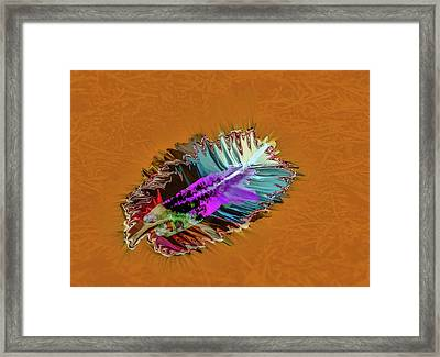 Feather #h8 Framed Print