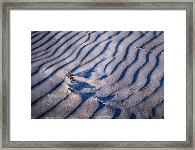 Framed Print featuring the photograph Feather In Sand by Michelle Calkins