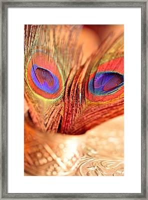 Feather Meets Sliver  Framed Print