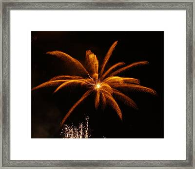 Feather Of Light Framed Print by Michael Canning