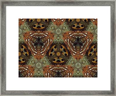 Feather Shield Framed Print by Ricky Kendall
