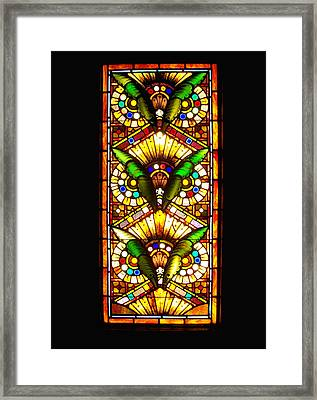 Feathered Folly Framed Print