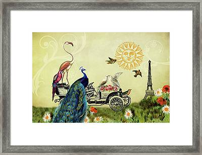 Feathered Friends In Paris, France Framed Print