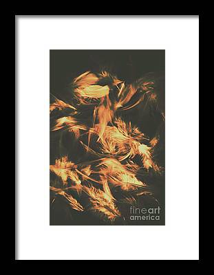 Plumage Framed Prints