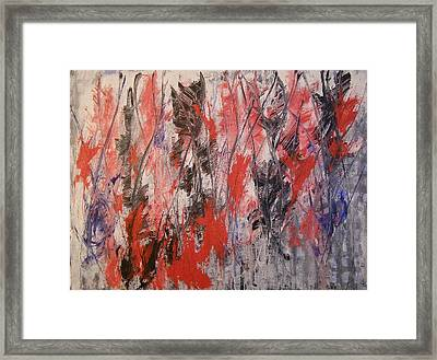 Feathers Framed Print by Don Phillips
