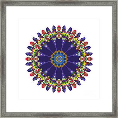 Feathers In The Round Framed Print by Mary Machare