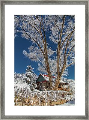 Feathers In The Sky Framed Print