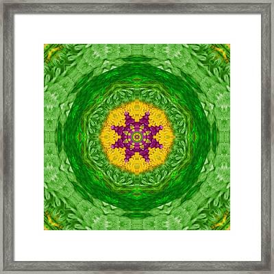 Feathers In The Sunshine Mandala Framed Print