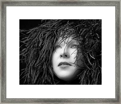 Feathers Framed Print by MAX Potega