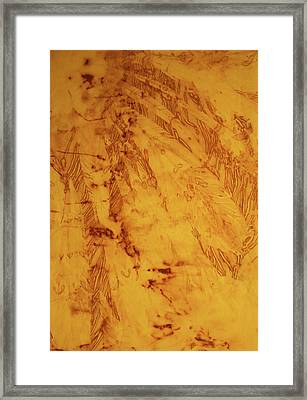 Feathers On The Wind Framed Print