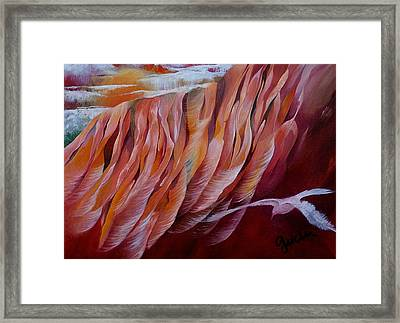 Feathers Framed Print by Peggy Guichu