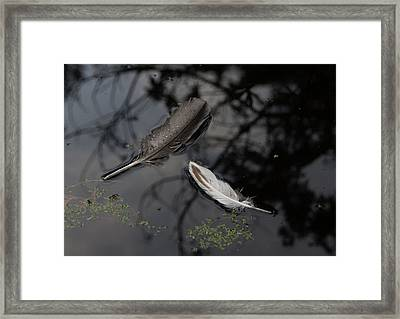 On The Surface Framed Print by Marilyn Wilson