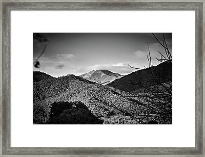 Feathertop Framed Print by Mark Lucey