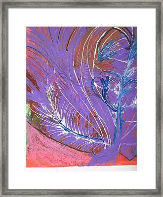 Feathery Fantasy Framed Print by Anne-Elizabeth Whiteway