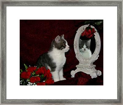 February 2006 Framed Print