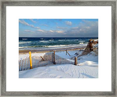 February Delight Framed Print