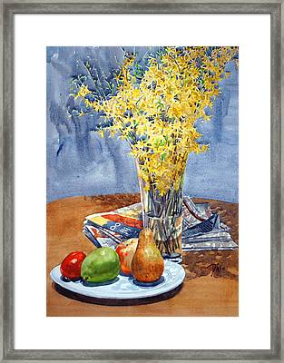 February Forthysia Framed Print by Peter Sit