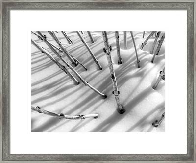 February In Minnesota Framed Print by Jim Hughes