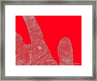 Feed Me Framed Print by Paulo Zerbato