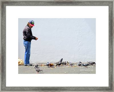 Feed The Birds Framed Print by Randall Weidner