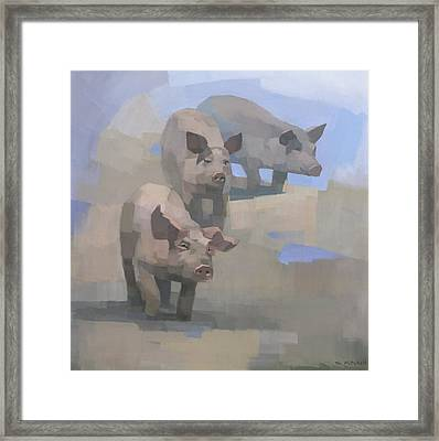 Feed Time Framed Print by Steve Mitchell