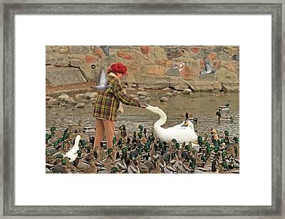 Feeding A Multitude Framed Print by Donna Kennedy