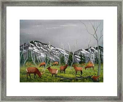 Framed Print featuring the painting Feeding Elk by Al Johannessen