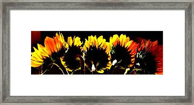 Soaking Up Sun Framed Print