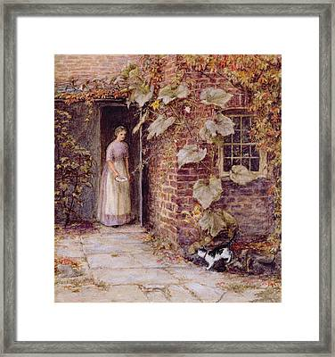 Feeding The Kitten Framed Print