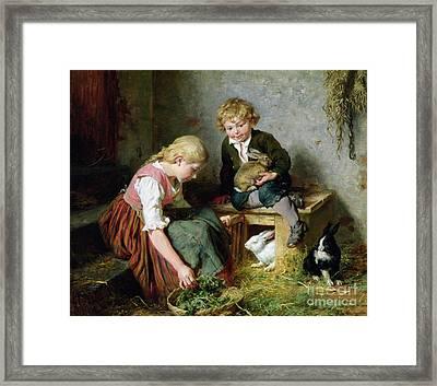 Feeding The Rabbits Framed Print by Felix Schlesinger