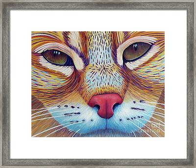 Feel It Framed Print by Brian Commerford